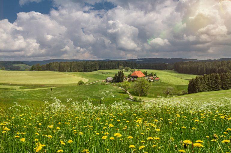Wellness-Tour im Süden von Deutschland: Zarte Versuchung