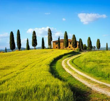 Mit allen Sinnen die Toskana erleben